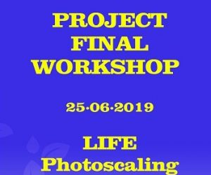 (Videos) All the Project Final Workshop Presentations