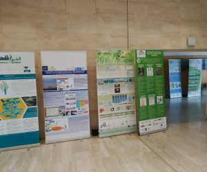 LIFE-PhotoScaling project presented in 13th PTEC Forum